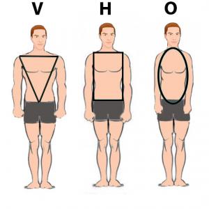 morphologie-homme